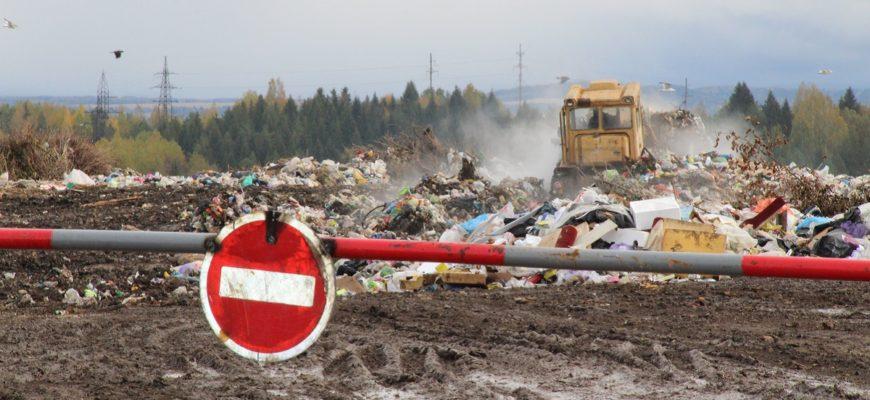 В Пермском крае регоператора по обращению с ТКО хотят освободить от уплаты налога на прибыль