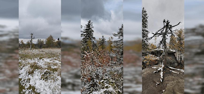 Снегопад в Пермском крае