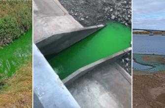 В Перми вода в реках окрасилась в зеленый цвет - прокуратура начала проверку